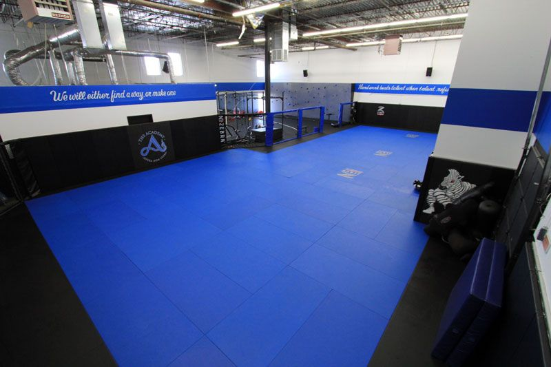 The Academy Mn Martial Arts Classes Free 30 Day Trial Mma